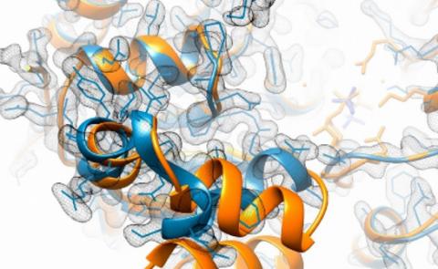 GLYCODET: Servicio Análisis de Glicosilación